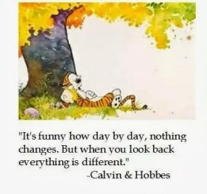 Calvin & Hobbes quote