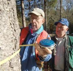 Master Woodland Managers