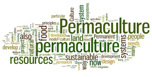 permaculture-wordle_Permanent Culture Now