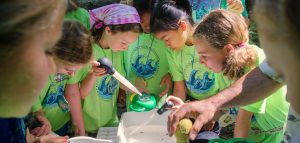 Girl Scouts use turkey basters and magnifying lenses to collect and view aquatic insects at Rock Creek near Corvallis. They were learning about the health of the creek through Oregon Sea Grant's StreamWebs program. (Photo by Pat Kight)