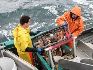 Crab fishing. Photo by Oregon Sea Grant.