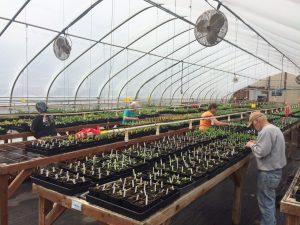 Wasco County Master Gardeners