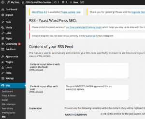 SEO RSS Content editing