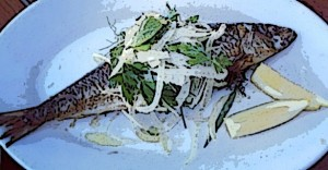 Sardine on plate with lemon wedges and fennel.