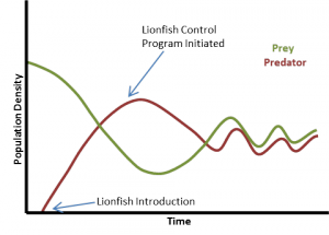 lionfish population dynamics_2