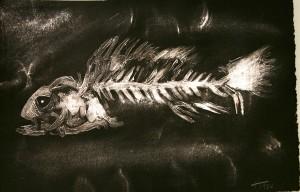 hannahfish