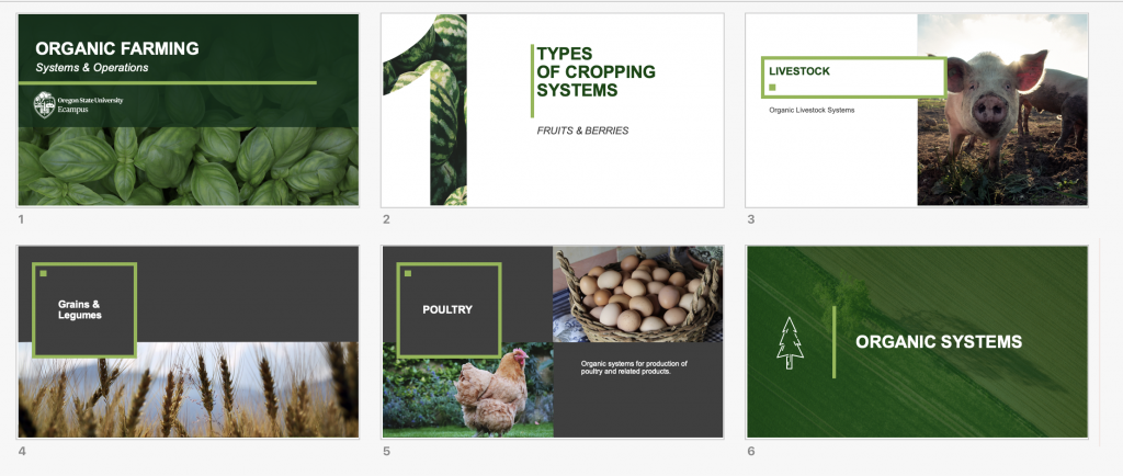Image of six slide showing an organic agriculture theme to a PowerPoint presentation.