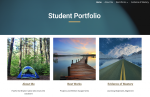 Student portfolio on the new google sites