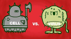 cells vs viruses
