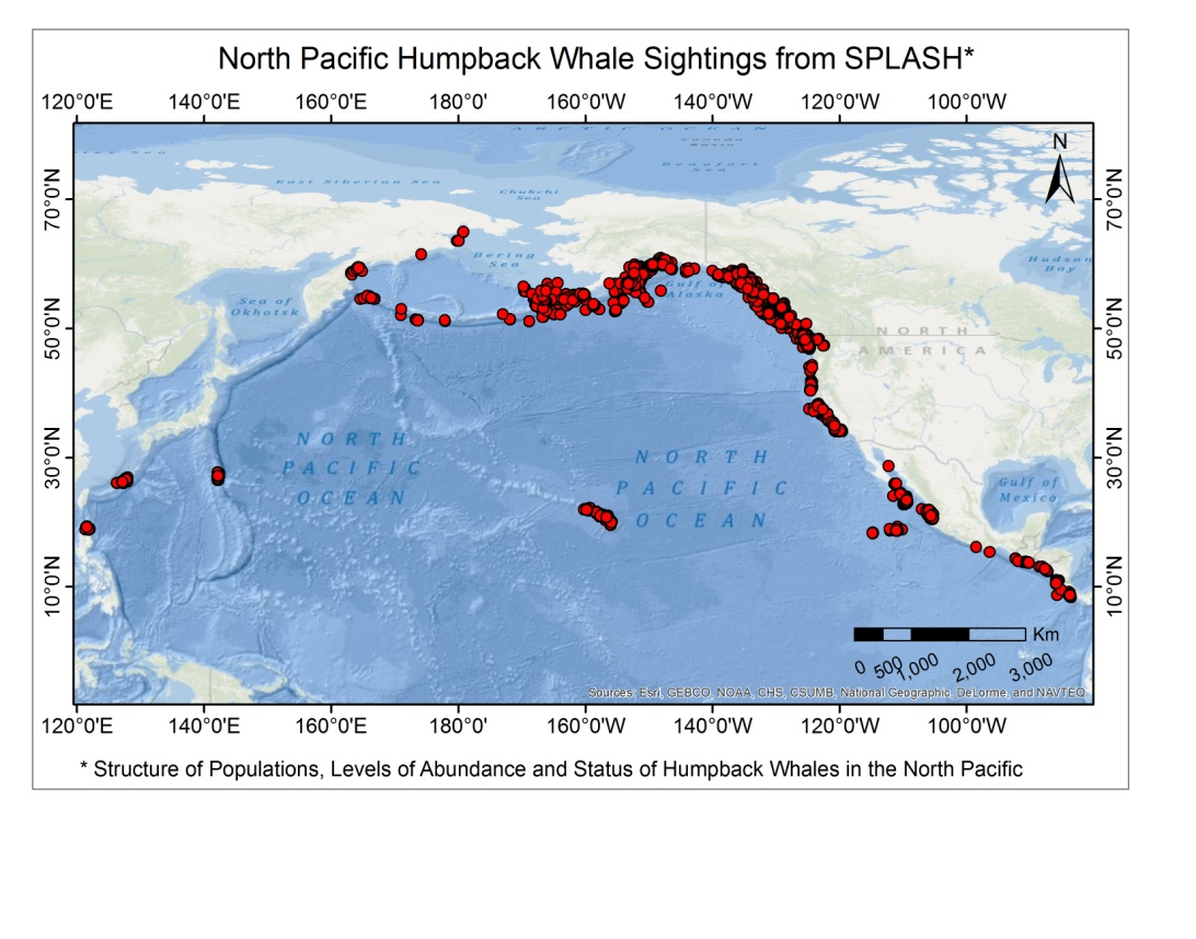 Blue whale habitat map - photo#13