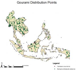 gourami_distPoint_data