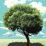 Picture of a tree symbolizing learning