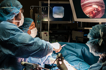 Dr. Milan Milovancev, soft-tissue veterinary surgeon at the OSU Veterinary Teaching Hospital, uses cutting-edge technology to remove the lobe of a dog's lung.