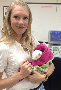 Veterinary cardiologist Dr. Nicole LeBlanc and her patient.