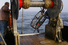 marine-debris-project