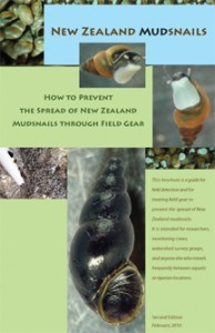 NZ-Mudsnails-2010-cover