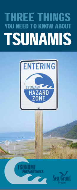 Three Things You Need to Know About Tsunamis