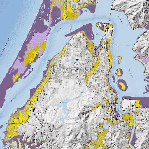 Coos Bay tsunami map