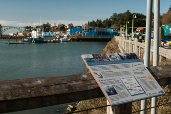Newport's bayfront is among the living classrooms for this week's ocean literarcy symposium