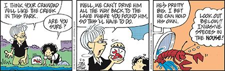 Stone Soup Comic