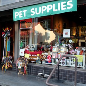 Pet supplies in shop window