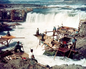 Celilo Falls fishery, early 1950s
