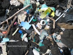 Microplastics on a Hawaiian beach
