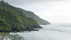 The southern view from Heceta Head.