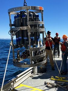 "Students on last year's cruise help retrieve the ""Sonde,"" an instrument used to measure the conductivity, temperature and pressure of seawater."