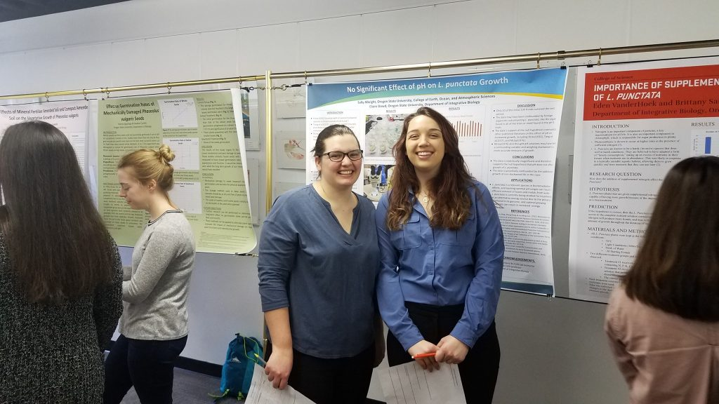 Students at a research poster session
