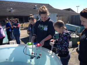 Completing the ROV challenge at the test site