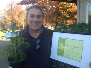 Master Gardener Rob Kappa displaying special recognition certificate and evergreen plant