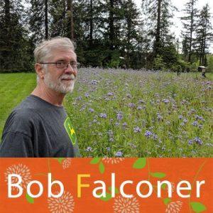 OSU Master Gardener Bob Falconer standing next to a field of blooming Phacelia.