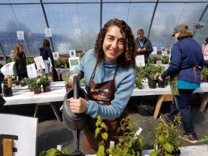 Master Gardener watering plants at GardenFest plant sale