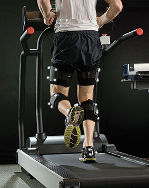 Functional Orthopedic Research Center of Excellence