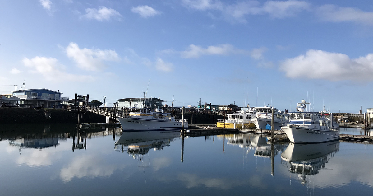 Boats at a marina where researchers met with crabbers