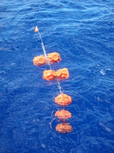 FODH mooring at the surface after coming up from ~11 km at Challenger Deep