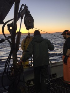 Recovering the hydrophone mooring during sunrise off Newport.