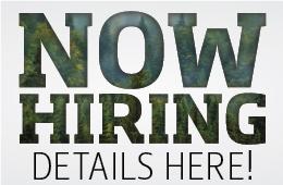 hiring_2016_websitebutton