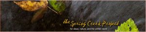 Spring Creek Project Banner