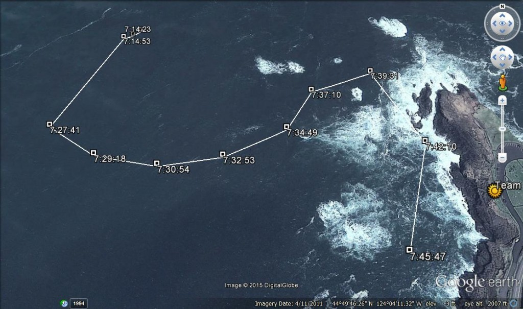 The track-line for whale 118 - a humpback who has been hanging out near Boiler Bay all week.