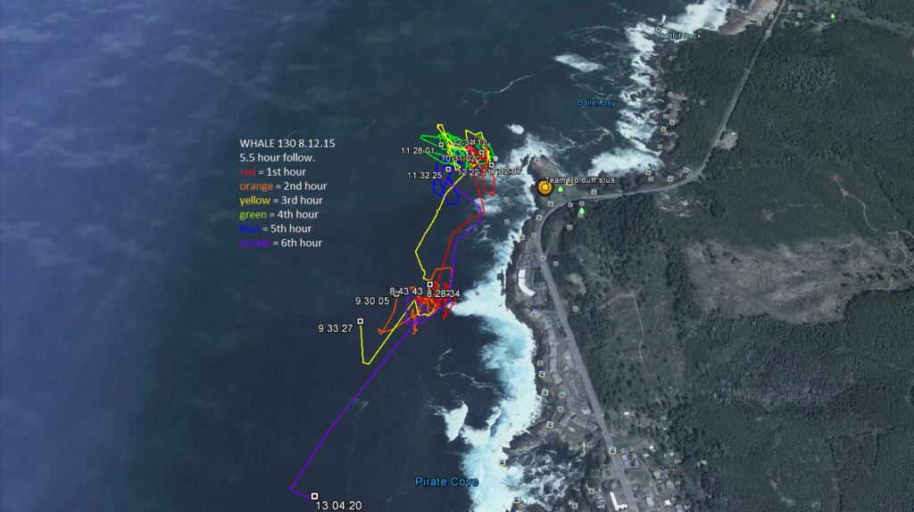 Whale 130 foraged near Boiler Bay for 5.5 hours on Aug 12. Trying to look at the whole trackline in one go is a little complicated, so let's break it down by hour.