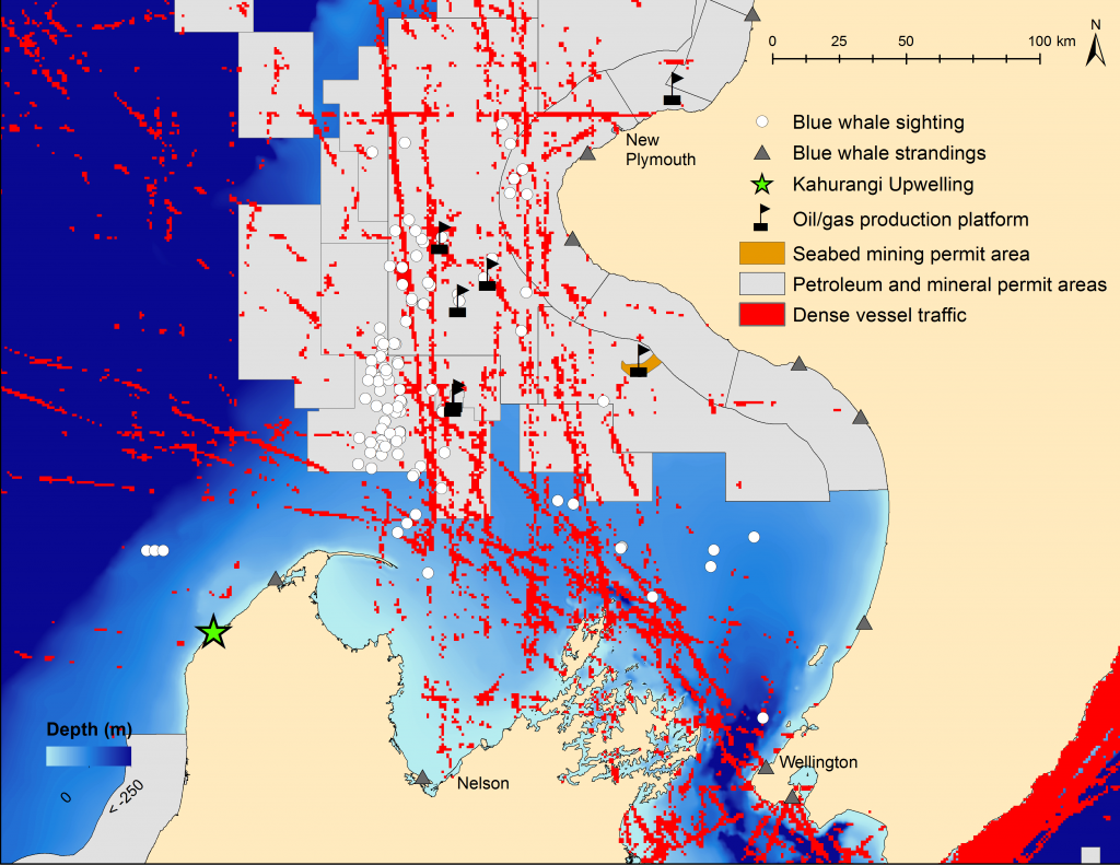 Figure 1. Illustration of a space-use conflict between industry activity and blue whales in the South Taranaki Bight, which lies between the north and south islands of New Zealand. Blue whale sightings and strandings recorded between 1970 and 2012.