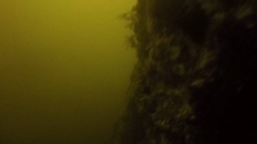 Figure 2. This GoPro image taken in Tichenor Cove illustrates exactly how murky our view of the water column is with the sediment dredging operation in close proximity.