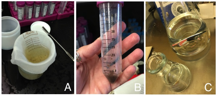 Figure 1: Analytical processes: (A) Filtration of the samples; (B) Result from filtration; (C) Addition of pure water to the samples.