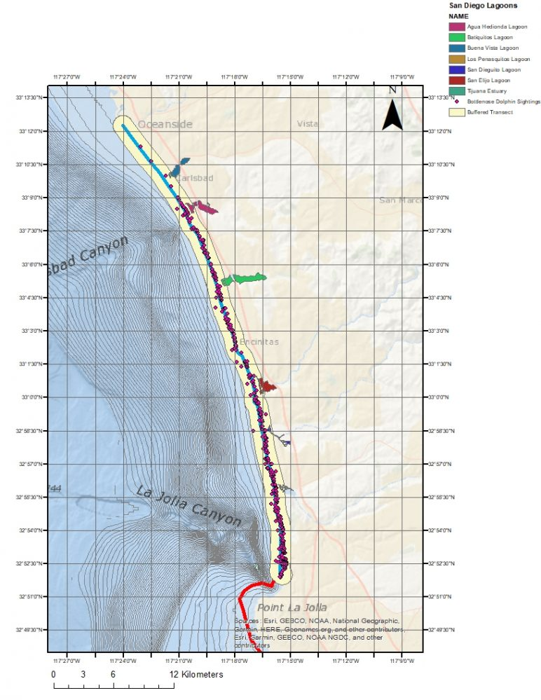 Bottlenose Dolphin Population Health Archives - Geospatial Ecology
