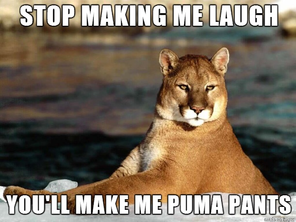 Stop making me laugh you'll make me puma pants