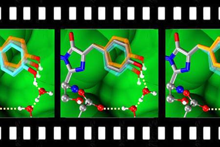 "Chemists develop ""molecular movie"" using imaging technology"