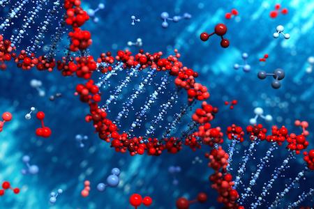 Inaugural Genetic Code Expansion workshop