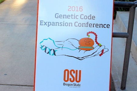 Genetic Code Expansion Conference Highlights